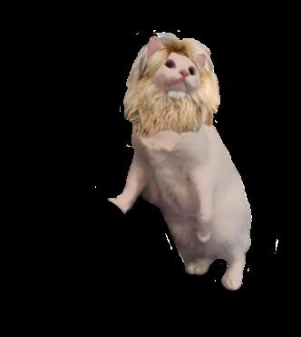 hamlet 5 (lion)