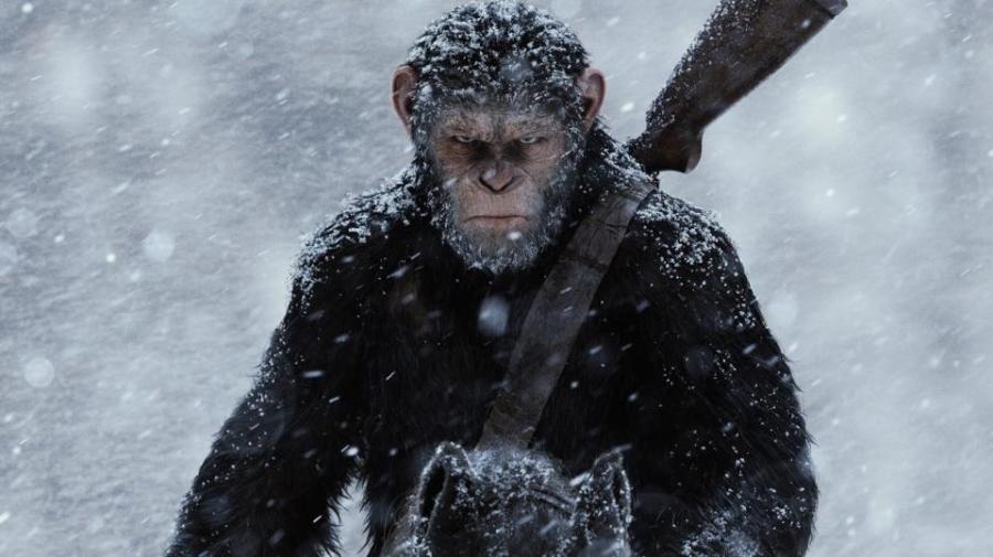 apes-1_1.jpg